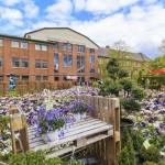Gartenmarkt im Maxipark macht Sommerlaune
