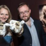 Teile von Einsteins Gehirn in neuer Sonderausstellung im LWL-Museum für Naturkunde