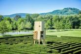 Hat den Überblick: Die begehbare Skulptur von Michael Sailstorfer im Gräflichen Park Bad Driburg. Foto: Gräflicher Park