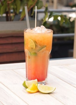 ALEX-Sommer-Cocktails und Impressionen aus diversen deutschen ALEX-Betrieben: ©ALEX