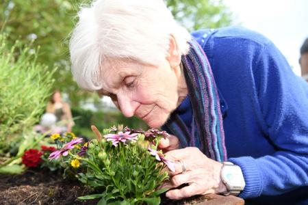 Eine Nase Blumenduft: Ingeborg Meyer genießt das Angebot Gartengruppe mit allen Sinnen.Foto: Johanneswerk / Christian Weische