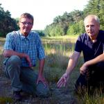 Heideflächen bieten gefährdeten Arten ein Zuhause