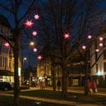 Rot leuchten die Weihnachtssterne