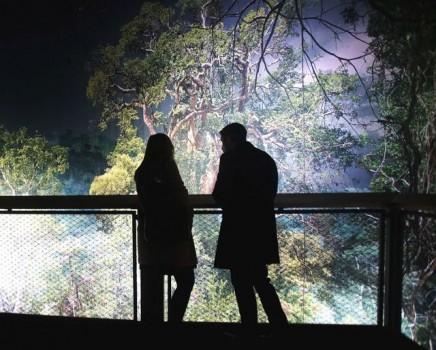 """360°-Panorama """"AMAZONIEN"""" von Yadegar Asisi begeistert die Besucher in Hannover. Foto: Panorama am Zoo"""