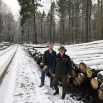 Forstarbeiten im Barntruper Stadt- und Interessentenwald dauern an