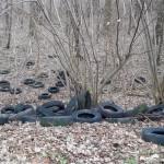 Illegale Müllentsorgung in Hahlen
