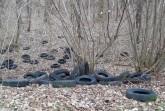 Illegale Müllentsorgung in Hahlen: Rund 150 Reifen am Mittellandkanal entdeckt