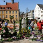 """""""Gütersloher Frühling"""" lässt die Blumen sprechen"""