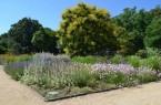 Geheimtipp Botanischer Garten: Am 2. Juni kann man sich nach einer Führung hier auch noch ein Picknick schmecken lassen.