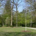 Im Stadtpark Gütersloh wurden neue Bäume gepflanzt