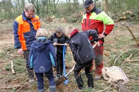Drei Schüler der OGS Brake pflanzen unter Anleitung der beiden Landesverbands-Forstwirte Rainer Varenholz (l.) und Andreas Peglow (r.) eine Stielei che.