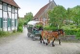 Am Internationalen Museumstag ist der Eintritt in das LWL-Freilichtmuseum Detmold frei. Foto: LWL/Jähne
