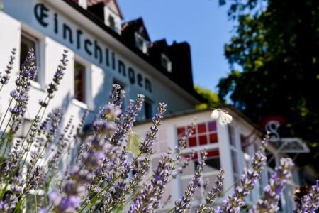 Foto Copyright: Haus Einschlingen