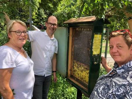 Betrachten die Bienen (von links): Imkerin Ingrid Dirkwinkel, BBF-Prokurist Dr. Hans-Jürgen Stern und Martina Brand vom Förderverein Naturbad Brackwede.