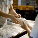 Bis zu 650 Euro mehr für Bäcker-Azubis