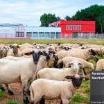ASSMANN nominiert für deutschen Nachhaltigkeitspreis
