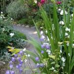 Offene Gärten in Lippe –Juli 2019