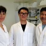 Neue Materialien für smarte Düngemittel in der ökologischen Landwirtschaft von morgen