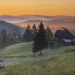 Erlebnisreiche Herbst-Tipps im Schwarzwald