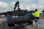 Kontrollen bei Abfalltransporte, Foto: Bezirksregierung Detmold