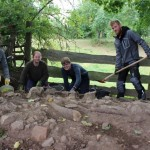 Stadtmauer von Borgentreich entdeckt