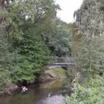 Rodenbeck macht sich stark für den Klimaschutz