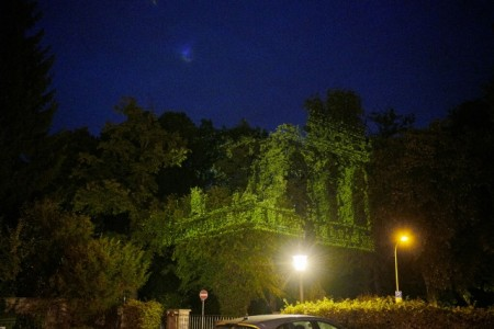 ParallelBühne Projektion in belaubte Bäume, Foto: Peter Hübbe