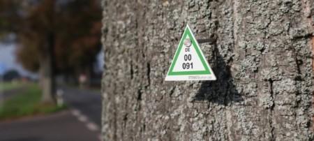 Jeder Baum wird mit einer Marke versehen auf der eine Nummer steht. Mit dieser Nummer kann der Baum im digitalen Baumkataster gefunden werden. Foto: Kreis Gütersloh