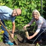 Kostengünstige Nährstoffanalysen des Gartenbodens im Herbst