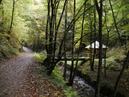 Tal der wilden Endert, Foto: Reiseland Cochem