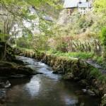 Die schöne Wilde – Wandermagazin im Ferienland Cochem