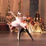 Ballett für die ganze Familie