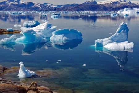 Impressionen aus Grönland, Foto: Reinhard Pantke