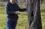 Foto BUND Lemgo - Hans-Georg Kosel bewundert den alten Apfelbaum eines Westfälischen Gülderlings