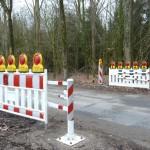Straßensperrungen wegen Krötenwanderung