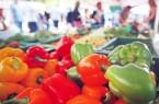 Der Markt startet am 2. April zunächst als wöchentliches Nahversorgungsangebot mit regionalen Händlern und Erzeugern. Foto: Bielefeld Marketing/Sarah Jonek