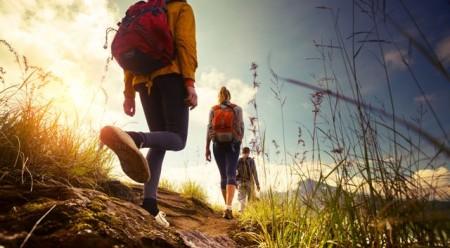 Erster Jugendreiseveranstalter garantiert CO₂-Ausgleich ohne Aufpreis