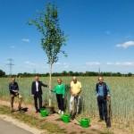 Bäume fürs Leben im grünen Gütersloh