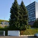 Kostenlose HIV- und STI-Tests im Paderborner Gesundheitsamt ab Donnerstag  wieder möglich