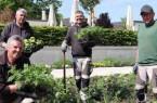 Sie bringen den Sommer in die Gartenschau: Die Gärtner Ralf Biermeier (vorne), Marglen Alla, Alban Alla und Mark Hunstig (hinten von links) haben in den vergangenen Tagen rund 30.000 Sommerblumen in der Gartenschau Bad Lippspringe gepflanzt. Die Besucher dürfen sich auf einen imposanten Blütenteppich in Gelb-, Orange-, Rot- und Weißtönen freuen.Foto: Landesgartenschau Bad Lippspringe
