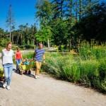 Gemeinsam für Urlaub 2020 in Bad Lippspringe