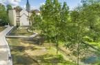 Am Tag der Architektur, 20. Juni, lädt die Stadverwaltung interessierte Bürgerinnen und Bürger zu einer Führung durch das umgestaltete Mittlere Paderquellgebiet ein, wie zum Beispiel den renaturierten Bereich hinter der Paderhalle. © Stadt Paderborn