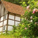 Mühlentechnik, Landschaft, Andachten und Bienen