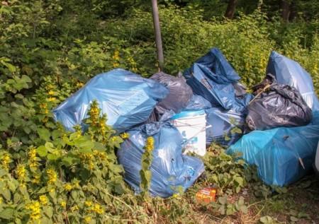 Mehrere Säcke Bauschutt und Farbeimer wurden im Friedwald Kalletal illegal entsorgt. Frank Homuth und sein Team haben ihn zum Wanderparkplatz auf dem Kirchberg gebracht, der eine gute Sammel-stelle für die örtliche Müllabfuhr ist. (Foto: Landesverband Lippe)