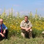 Wildpflanzen statt Mais zur Biogasgewinnung