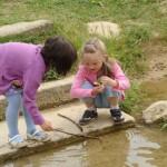 Steckenpferde, Kaltblüter, Körbe und Kinderspiele