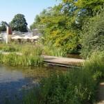 Sanierung der Stege im Botanischer Garten