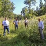 Blühwiesen und Blühstreifen erobern Landesverbandswälder