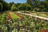 Stadtpark Gütersloh mit Sommerblumenbeeten