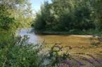 Die Lippesee-Umflut bietet bereits Lebensraum für stark bedrohte und besonders schützenswerte Gewässer- und Auenbewohner. Auch der neue Abschnitt könnte nach der Renaturierung so aussehen. © Bezirksregierung Detmold